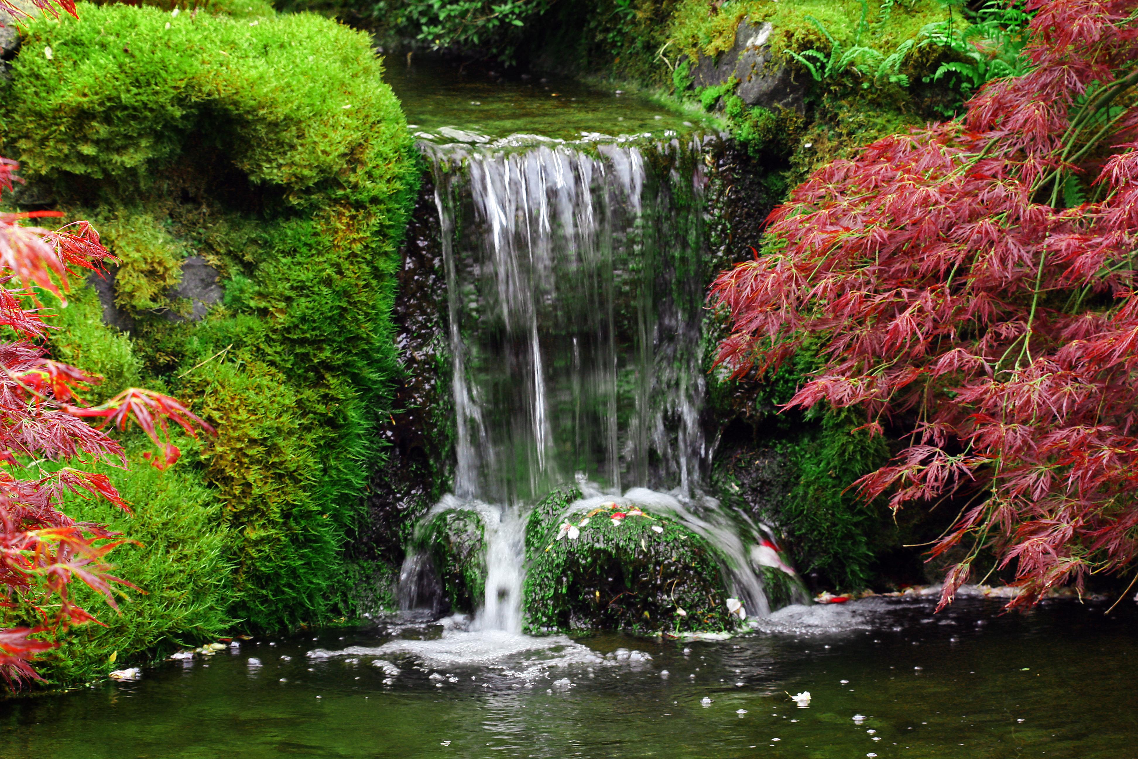 Yuk, Percantik Taman dengan Air Terjun Buatan