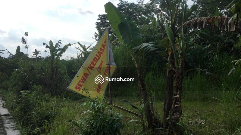 Tanah 1556 M2 Yogyakarta Desa Pendowoharjo Sleman #89793649
