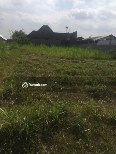 Tanah 1556 M2 Yogyakarta Desa Pendowoharjo Sleman #91064309