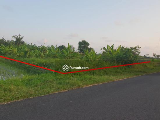 960 Gambar Pemandangan Rumah Dan Sawah HD