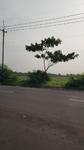 Jalan Raya Cirebon - Brebes Km. 11, Astanajapura, Cirebon, Jawa Barat 45181, Indonesia