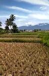 Jl. Pramuka, Cikondang, Citamiang, Kota Sukabumi, Jawa Barat, Indonesia