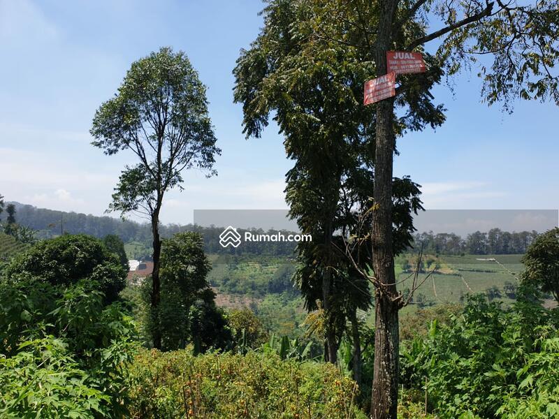 Dijual Tanah Di Dago Atas Cocok Untuk Usaha Tempat Wisata Villa Cafe Dll