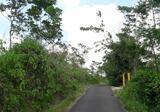 >> DIJUAL Tanah / Kavling di Cikalong Wetan (Patung Nanas) Walini sangat bagus untuk investasi