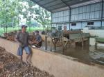 Factory Tayu, Pati, Jawa Tengah
