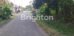 Brighton Sanur