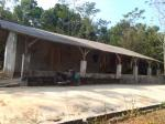 Jual Murah Tanah Kebun 1300 m2 & Pabrik Penggilingan Padi Beserta Alatnya di Kiarapedes Purwakarta