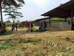 Exs Peternakan Sapi di Ds Gunung Guruh Sukabumi