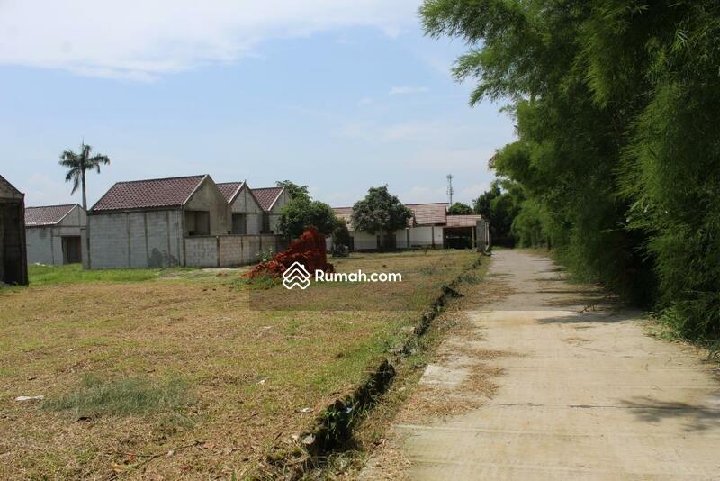 Tanah JAKAL KM 10, Dekat UGM: View Sawah #101012325