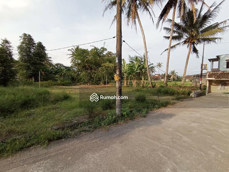 Tanah JAKAL KM 10, Dekat UGM: View Sawah #109157155