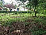 Dijual Tanah Pekarangan Strategis di Belakang SD Negeri 1 Cangkrep Lor , Kota Purworejo, Jawa Tengah