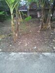 Tanah kering siap bangun pinggir jalan dekat lapangan Goriroto