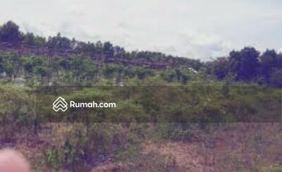 Dijual - Tanah di kalimantan bisa tambang dan perkebunan