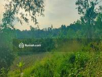 Dijual - Tanah Murah Jual Cepat Seluas 33 Hectar Harga Dibawah NJOP di Pinggir Jalan Raya Serang, Banten