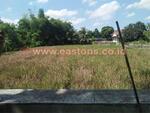 Dijual Tanah Sawah Luas di Purwonegoro