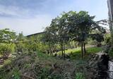 Tanah Murah di Cisaranten Kulon Arcamanik Jarang Ada