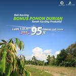 Termurah Tanah Kavling Durian dijamin untung di Tasikmalaya