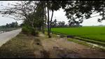 Tanah Desa Tempuran Karawang
