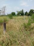 Tanah di Purwokerto, Jawa Tengah