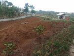 Jual Cepat Tanah Murah di Kp Nutug Sukabumi Jawa Barat