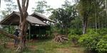 Tanah Kebun Manggis Teh dan Cengkeh di Purwakarta Jawa Barat jual Murah