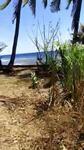 Lahan beach front di bondalem tejakula
