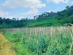 jual tanah perumahan bandung barat walini cikalong wetan view seperti di ubud