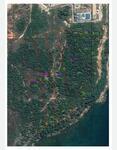 Tanah Dijual Di Natuna, SHM, Peruntukkan Pariwisata, Pinggir Pantai di Tanjung Datuk