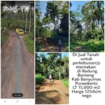 Tanah Perkebunan/Peternakan di Ds Dawuan Wetan kec Kedungbanteng