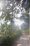 Tanah Cocok Untuk Homestay Dekat Borobudur