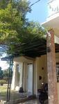 Rumah Dijual Cepat Strategis Cluster Garden Villas Pinus Regency
