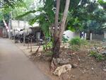 3 Bedrooms Tanah Komersial Bintaro, Jakarta Selatan, DKI Jakarta