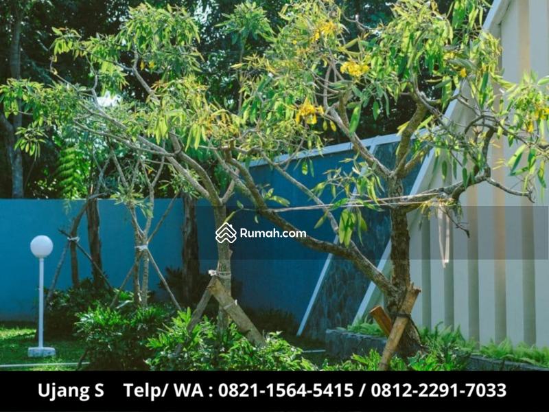 Rumah Murah Pusat Kota, Lokasi Strategis,Dekat Ke exit Tol Subang lokasi Subang Jawa Barat #99196173