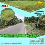Tanah Mempawah, Hilir Kalbar, Kalimantan Barat