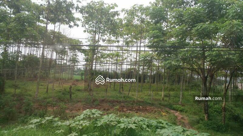 Dijual Tanah Industri Cikande Harga Bagus #101352061