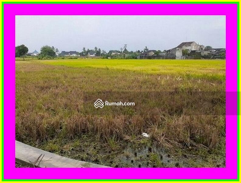 Cicil 12x Tanpa Bunga: Tanah Kapling Jogja 2 Km Kampus UTY #101449489
