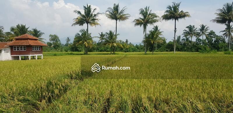 Dijual Sebidang Lahan Tanah di Karangtengah Cianjur Jawa Barat #101451521