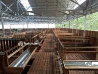 Dijual - Tanjungsari Bogor