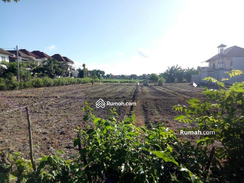 Disewakan Murah Lokasi Tanah  Renon - Jl. Tukad Badung #101591281