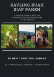 Investasi Kavling Kebun Buah, Harga Murah Lokasi Pinggir Jalan Raya