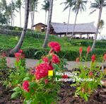 10+ Bedrooms Vila Palembayan, Agam, Sumatera Barat