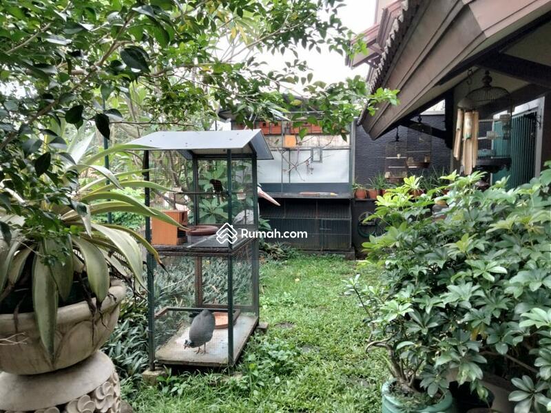 Rumah asri nyaman di Pamulang Tangeran #102843625