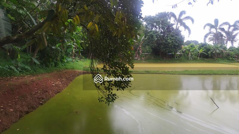 Ciseeng Bogor Jawa Barat #103358789