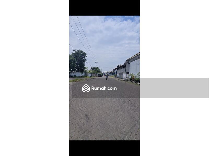 Disewakan Cepat Baru Renov Gudang Margomulyo,Tandes,Perak,Jawa Timur #103526021