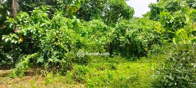 """DiJual Cepat """" Tanah Kavling """"  Lokasi Pinggir Jalan, di Kemang Selatan #103991459"""