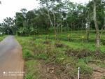 Tanah Kavling Komersial Lokasi Lembahsari, Jatinegara, Kab. Tegal