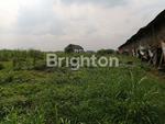 Tanah Dijual Tawar Gondang Mojokerto