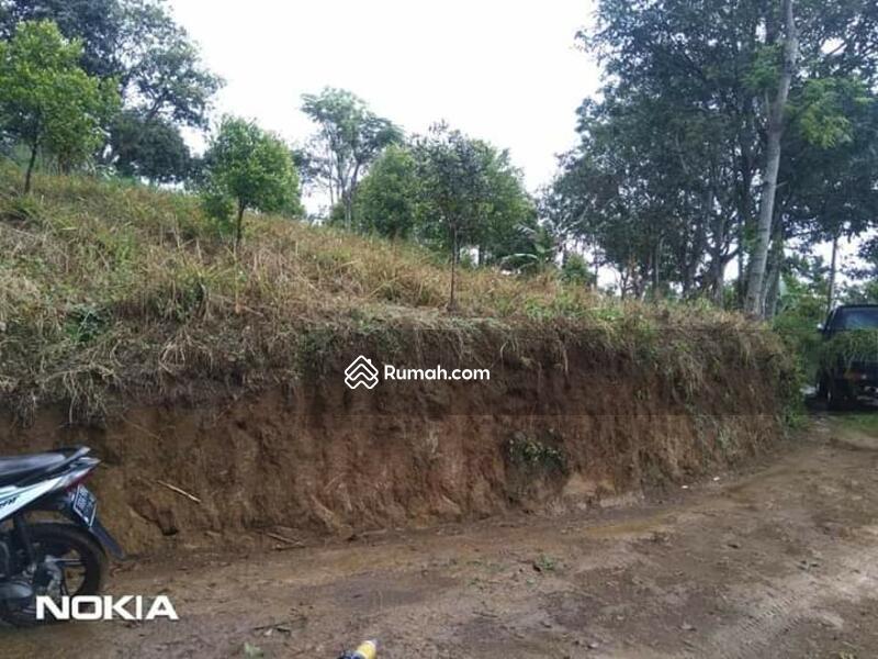 Dijual Tanah Lokasi Strategis Desa Tanjung Sari Ci Jeruk Bogor #105190373