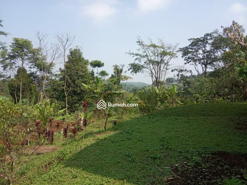 Jual Tanah Murah Di Megamendung Bogor #105191891
