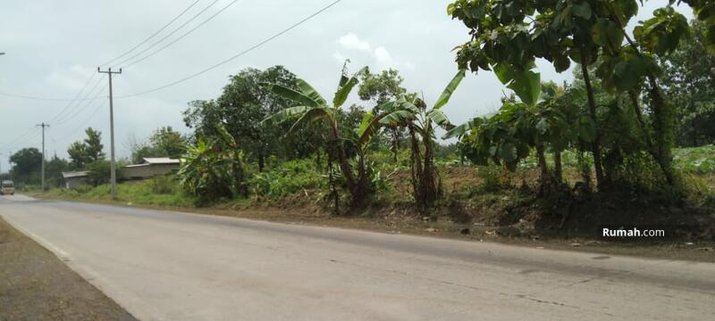 Dijual tanah indramayu Subang cikamurang cocok untuk kawasan industri akses dekat toll dan bandara #105194399